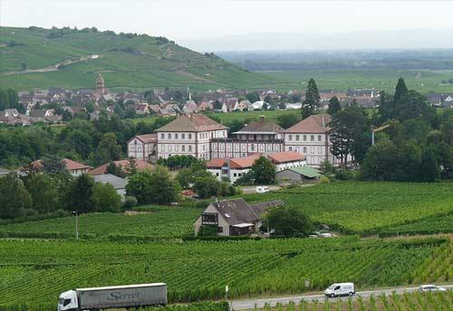 Ancien Lycée seijo de Kintzheim au milieu des vignes